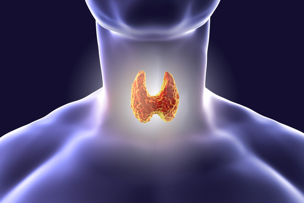 أعراض الغدة الدرقية وأسبابها وعلاجها طبيعياً