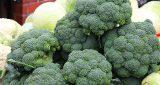أفضل 12 طعامًا مضادًا للسرطان منها الرمان والثوم