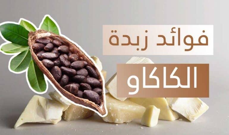 فوائد زبدة الكاكاو للسعال والوجه والجسم والشعر