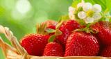 5 فوائد الفراولة للبشرة أسرار لم تعرفها من قبل