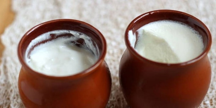 Curd for Weight Loss 21