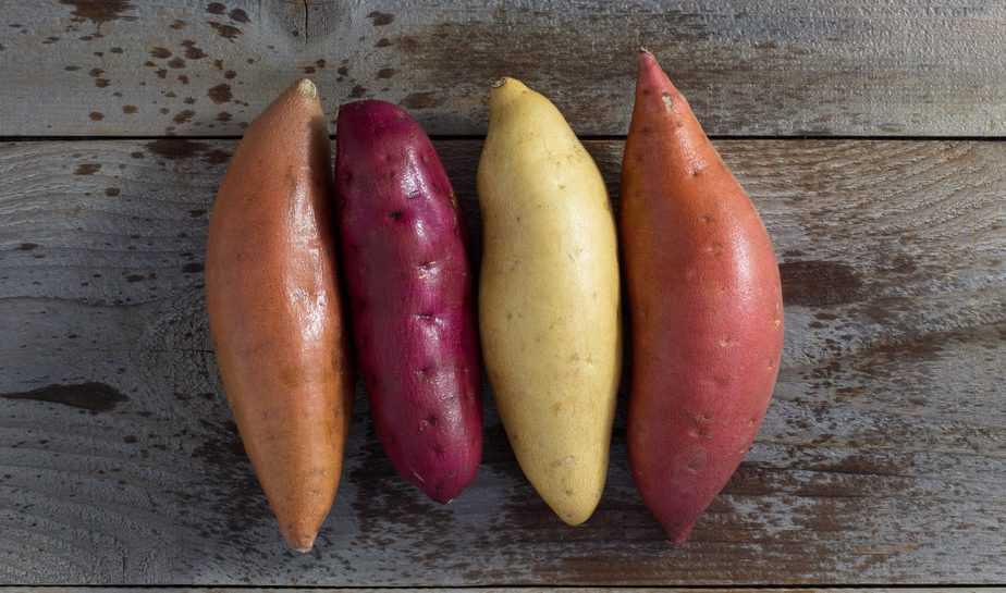 انواع البطاطا الحلوة- أونيلا