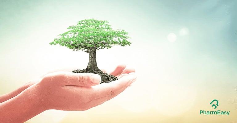 طرق لجني فوائد الطبيعة للصحة العقلية