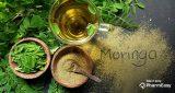 أهم 3 فوائد زيت المورينجا للبشرة