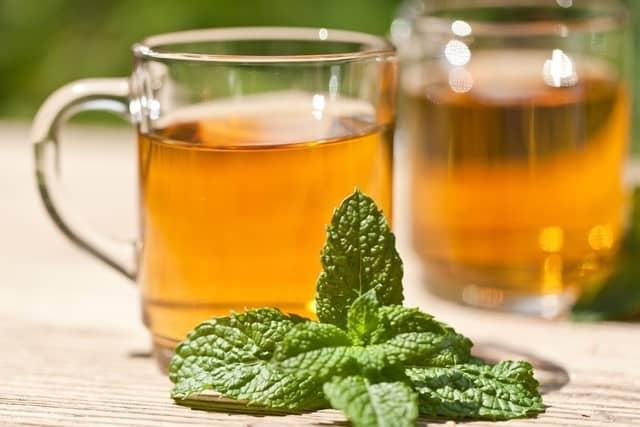 شاي النعناع لعلاج الغازات عند الحامل - أونيلا
