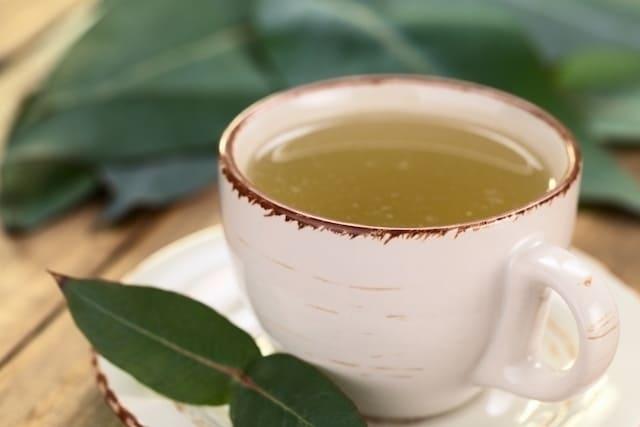 3 وصفات لتحضير شاي جواكو للتخفيف من السعال