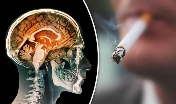 كيف يؤثر النيكوتين أو التدخين على الدماغ ؟ - أونيلا