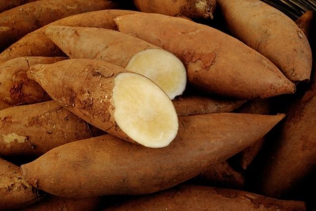 البطاطا الحلوة لمرضى السكرى